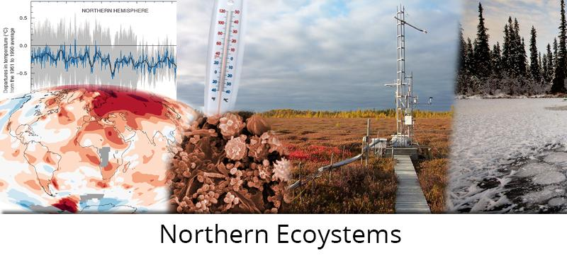 Northern Ecosystems