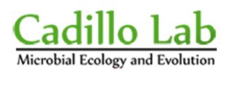 Cadillo Lab Logo