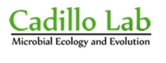 Cadillo Lab Logo